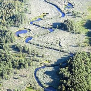 Spływ kajakowy Rospuda